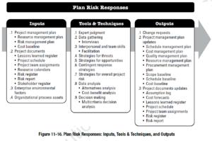 PMBOK Process: Plan Risk Responses