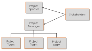Generic project organization chart
