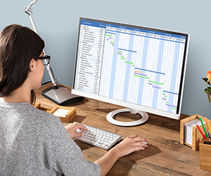 Woman using Gantt chart