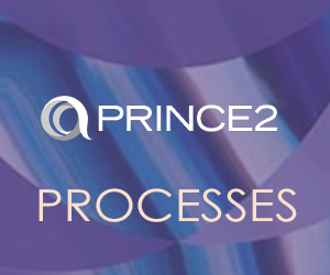PRINCE2 Processes