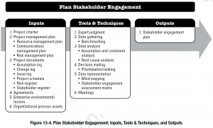 plan stakeholder engagement