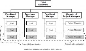 Composite organizational structure