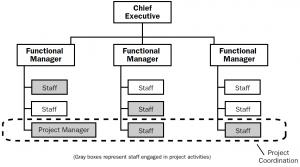 Balanced matrix organizational structure