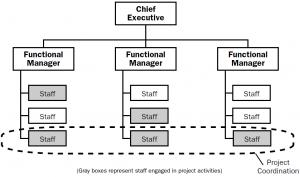 Weak matrix organizational structure