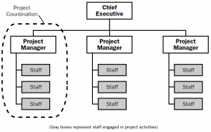 Project-oriented organizational structure